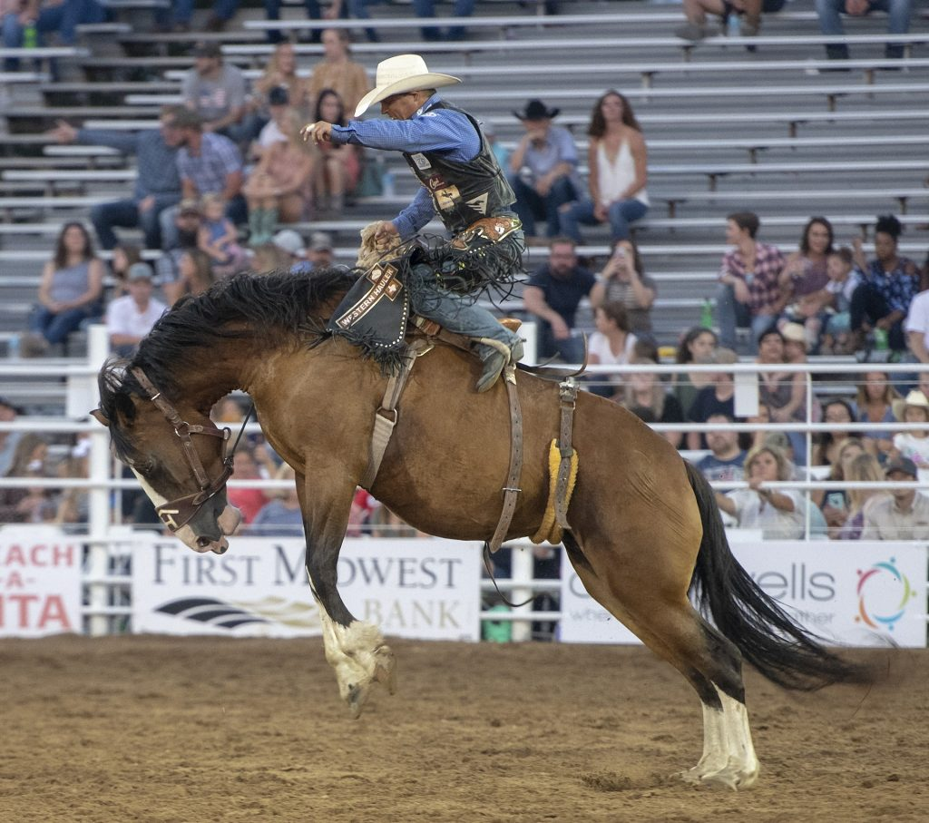 Rodeo horse and rider